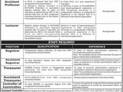 Jobs Archives - Library and Information Management